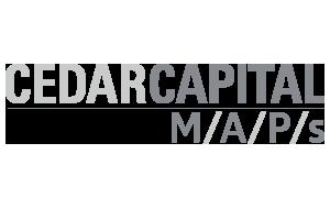 MAPs logo (gray)
